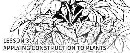 Applying Construction to Plants